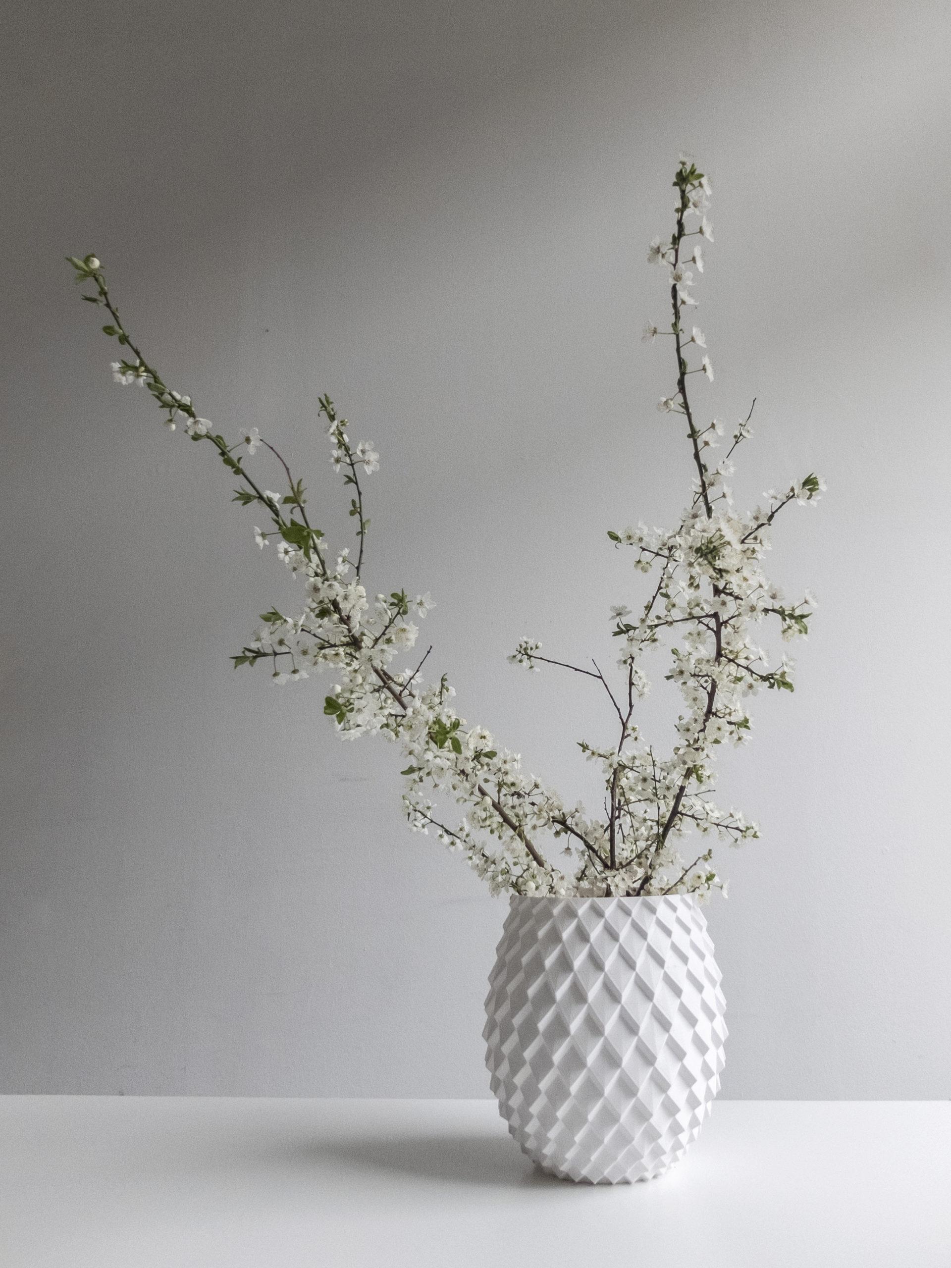 Photograph with flowers of 3d print parametric vase design